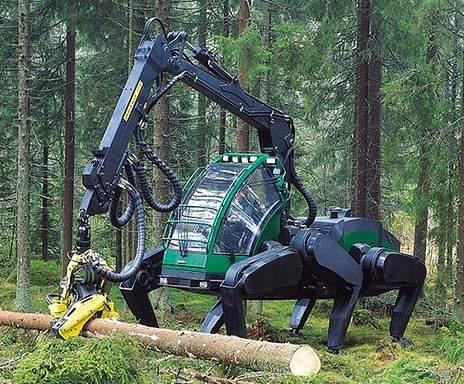 Валка деревьев и леса