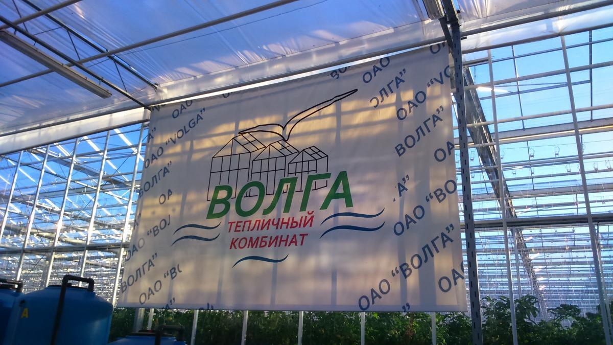 АО «Волга» совместно с BASF продолжает эксперимент по выработке улучшенной газетной бумаги