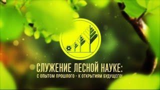 Всероссийский научно-исследовательский институт лесоводства и механизации лесного хозяйства (ВНИИЛМ)