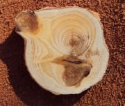 Достоинства и недостатки древесины