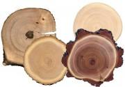 Твердость древесины