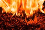 НП «Национальный Биоэнергетический Союз», ИАА «ИНФОБИО» и журнал «Международная Биоэнергетика» представят свежую аналитику рынка древесных топливных гранул на 18-м Петербургском международном лесопромышленном форуме
