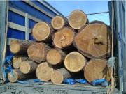 ГОСТ на лесоматериалы круглые