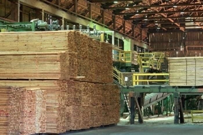 В Тироле построен производственный цех с крышей из строительного бука