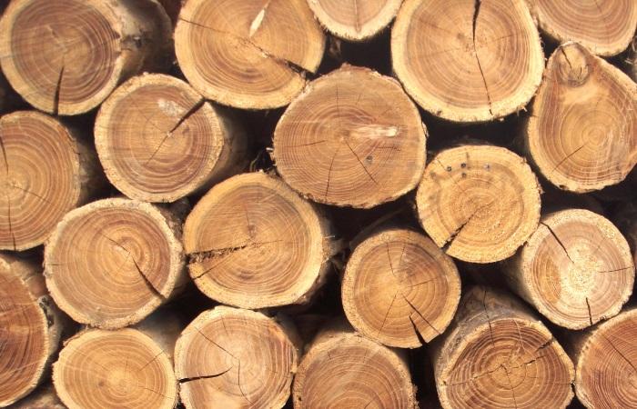 Неоднозначные результаты рынка лиственной толстомерной  древесины и хвойной древесины