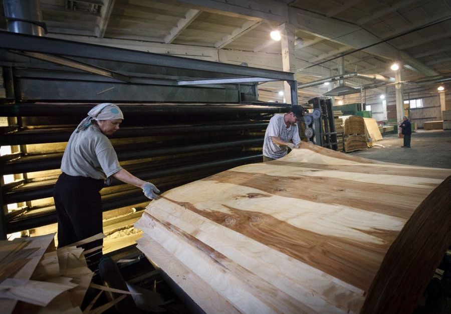 В Кировской области построят Мурашинское фанерное предприятие