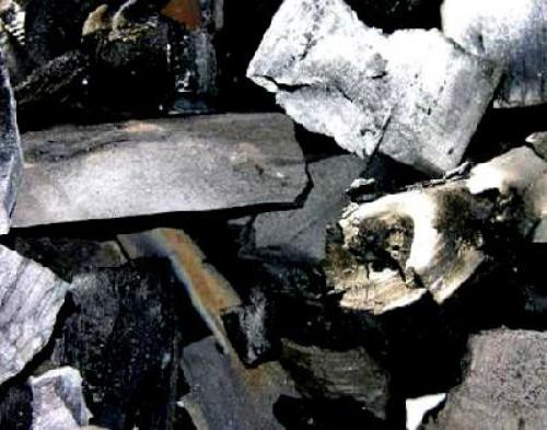Байкальский древесноугольный комбинат запущен в работу