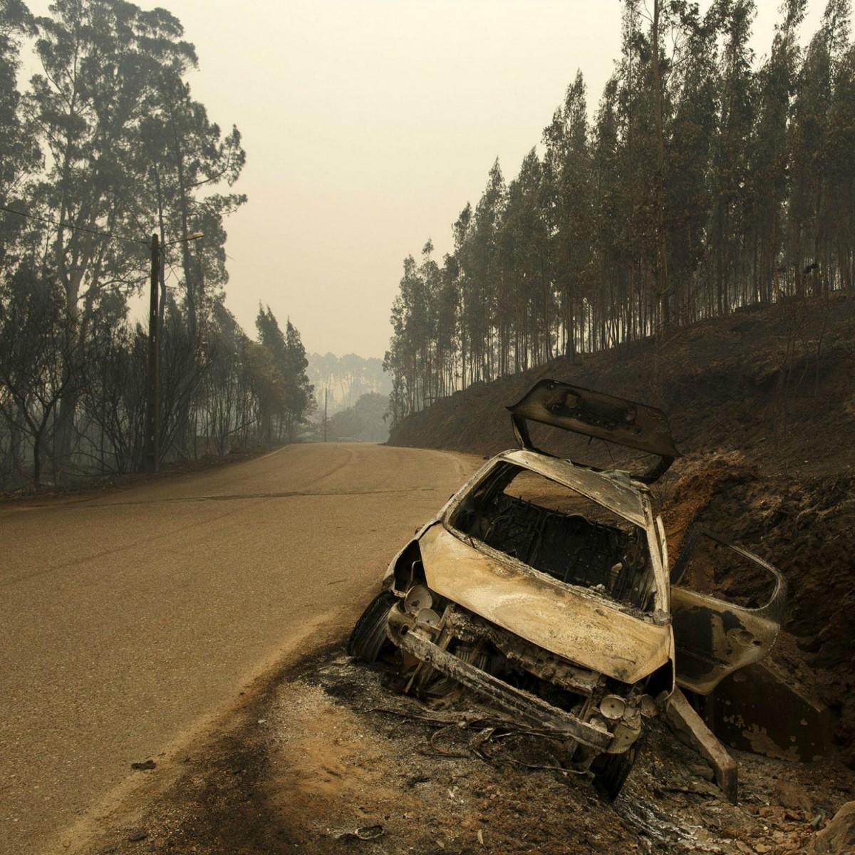 Португалия переймет австралийский опыт тушения лесных пожаров