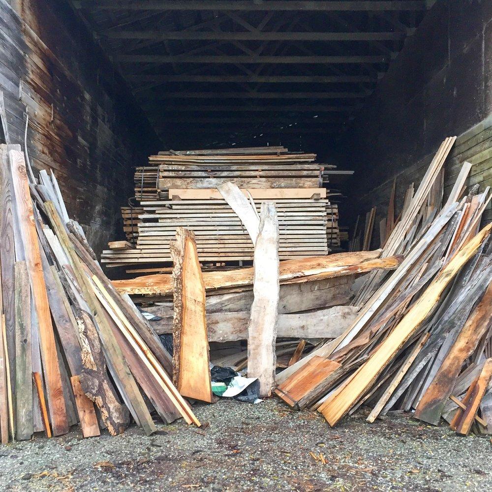 Начались съемки фильма о лесодобывающей промышленности