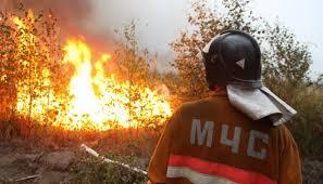 Шесть пожарных Красноярского края получили ожоги во время тушения лесного пожара