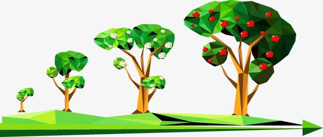 Деревья в городах растут быстрее, чем в селах