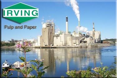 «Irving Pulp and Paper» заключила пять контрактов на модернизацию целлюлозного комбината