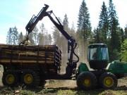 Потери качества ценных экспортируемых лесоматериалов