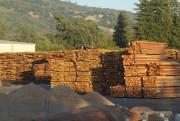 Экспорт пиломатериалов лиственных пород в Европу сократился