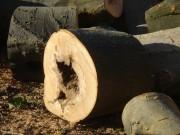Защита древесного сырья от потери качества