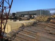 Развитие лесной промышленности в мире