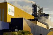 «Fibria» увеличивает производственную мощность подразделения в Трес-Лагоас