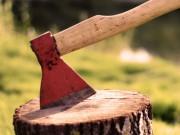 Срубить дерево непросто