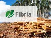 «Fibria» заключила контракт с «Pöyry» об участии в осуществлении проекта «Horizonte 2»