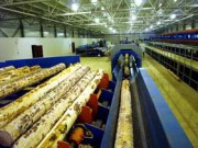 В 2015 г. в РФ будут запущены в работу лесоперерабатывающие мощности по девяти инвестиционным проектам