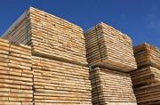 Объемы торговли пиломатериалами остались сравнительно высокими в первом полугодии