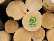 В Германии растет спрос на PEFC- сертифицированную тропическую древесину