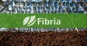 «Fibria» выбрала «Veolia» для строительства трех предприятий в Бразилии