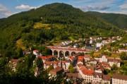 В Баден-Вюртенберге проведено исследование изменения климат