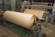На предприятиях KapStone Paper and Packaging Corporation в США произойдет временная остановка производства