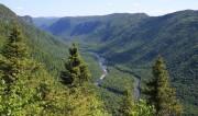 Заключено соглашение об охране прибрежных влажных тропических лесов в Канаде