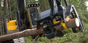 Как организовано предприятие лесозаготовки?