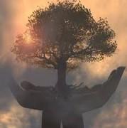 Лес - богатство планеты