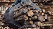 Положение дел у пильщиков хвойных лесоматериалов Германии улучшилось