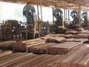 Лесная и деревообрабатывающая промышленность России