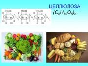 Биологическая роль целлюлозы и области применения
