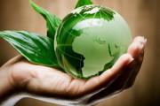 Норвегия предлагает возможности для развития биоэкономики