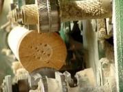 В Карелии будет создан завод по глубокой переработке древесины