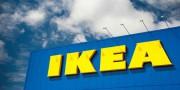 «Prokon» продает леса в Румынии концерну «Ikea»
