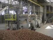 Топливные пеллеты начнут производить в Тамбовской области