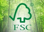 Лесной попечительский совет вручил «International Paper» за лидерство в сертификации