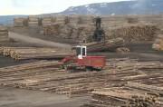 Владелец лесопилки Hornepayne планирует запуск в середине декабря