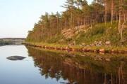 """Запретили рубки в лесах вокруг Национального парка """"Онежское Поморье"""""""