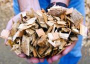 Биопродукцию можно будет получать из отходов лесопроизводства благодаря новой разработке красноярских ученых