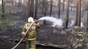Усиливается деятельность федеральных штабов по тушению лесных пожаров