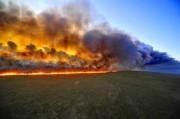 В борьбе с лесными пожарами в Ярославском регионе будет помогать оптическая система раннего обнаружения возгораний