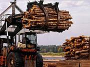 В Томском регионе обсудили проблемы нехватки кадров для ЛПК
