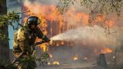 В Красноярском крае и Иркутском регионе начались страшные пожары
