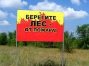 На территории Ярославского региона ведутся противопожарные мероприятия