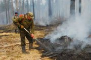 Лесные пожарные повторили для юных жителей Смоленска правила безопасного поведения в лесу