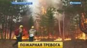 Гринпис: растет площадь пожаров в Бурятии
